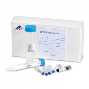 DNA Fingerprint Experiment Set