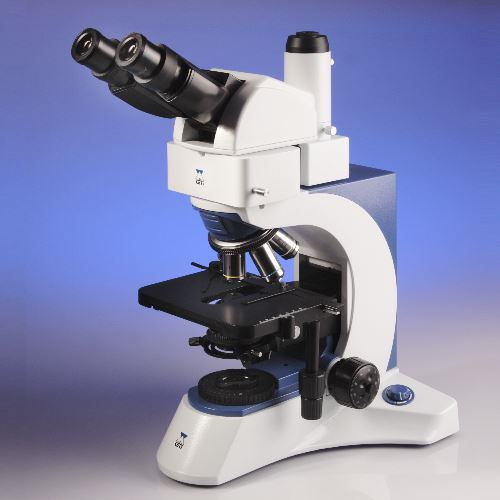 Triton II 50W Microscope with Ergonomic Trinocular Head